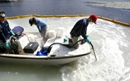 Minnesota lake first in nation to use new product to kill zebra mussels