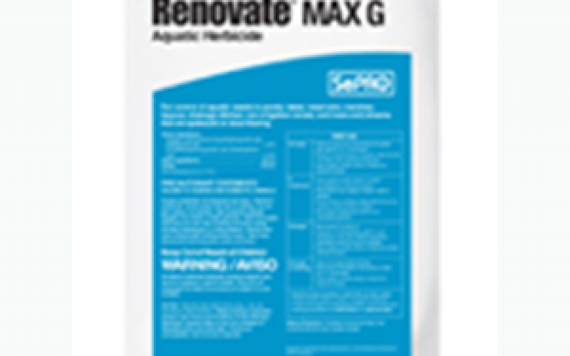 RenovateMax
