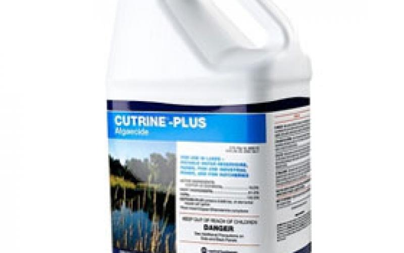 product-cutrine-plus