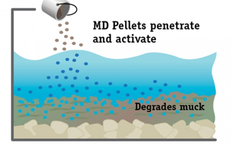 product-muck-digestion-pellets
